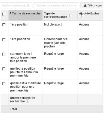 Analyse des termes de recherche - Google AdWords / Ads