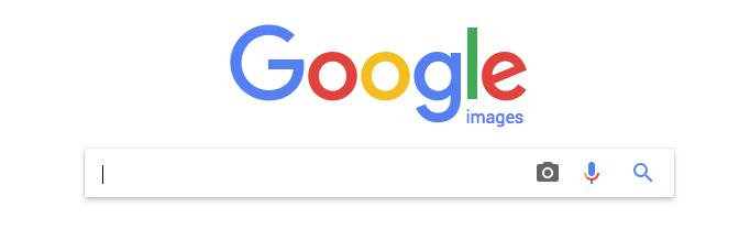 Capture d'ecran de la barre de recherche de Google Images - 1ère Position