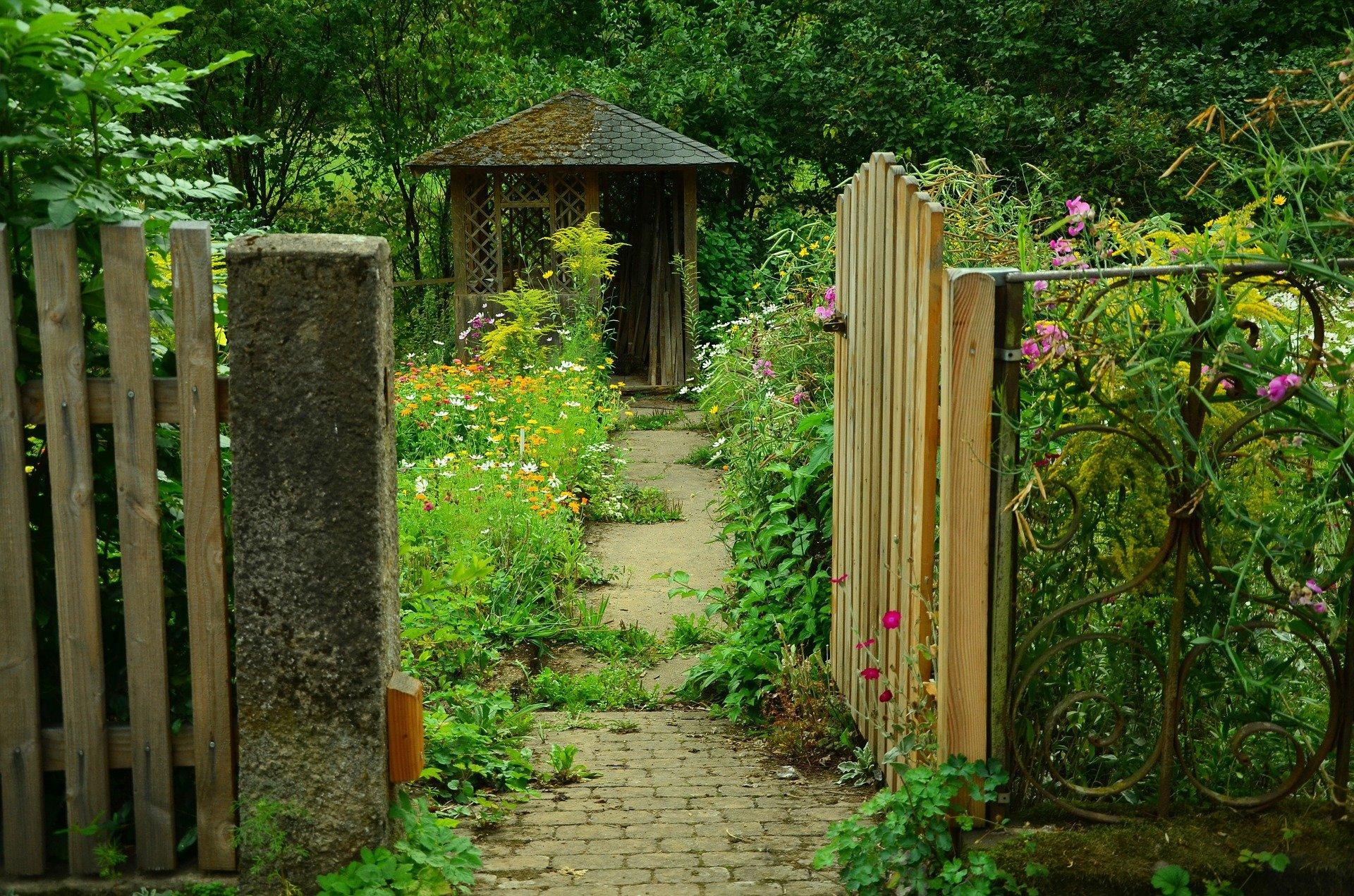 Jardin à l'abandon sans entretien
